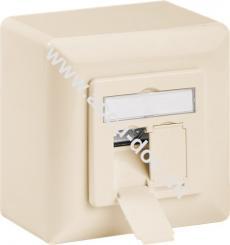 CAT 6 Universaldose inkl. Aufputzmontage-Rahmen, Beige - 2x RJ45 Netzwerkdose geschirmt